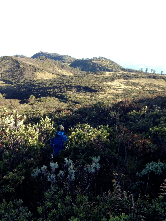 John descending from the summit