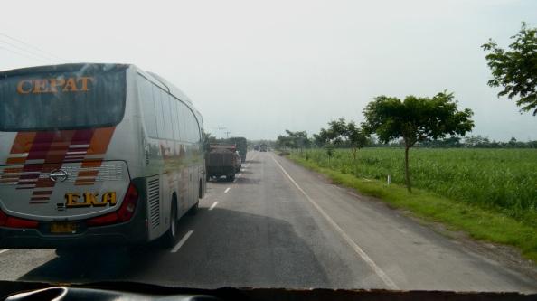 Passing buses despite oncoming traffic