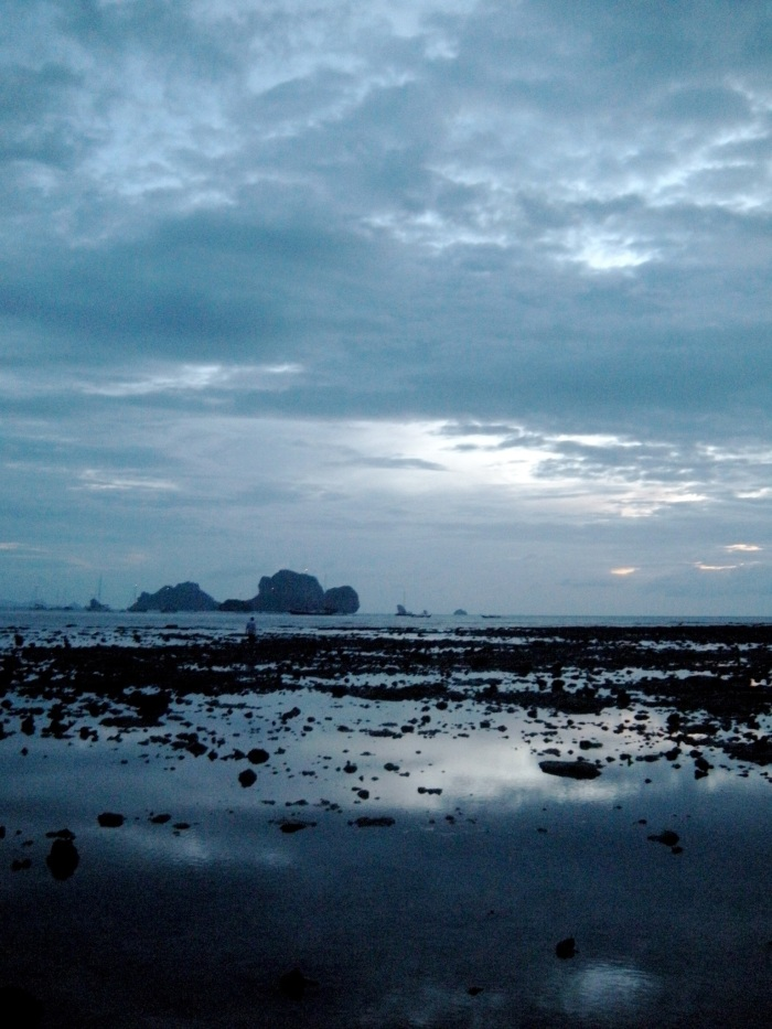 Dusk and Low Tide on New Year's Eve