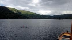 Davinia taking a swim in Ullswater