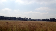 Cathedral in the Distance from Newbold Comyn