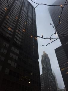 Sleek Gotham